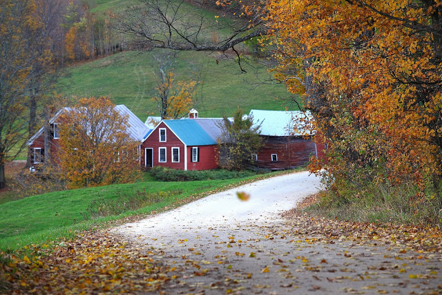 """Jenne Farm(珍妮农场)""的图片搜索结果"