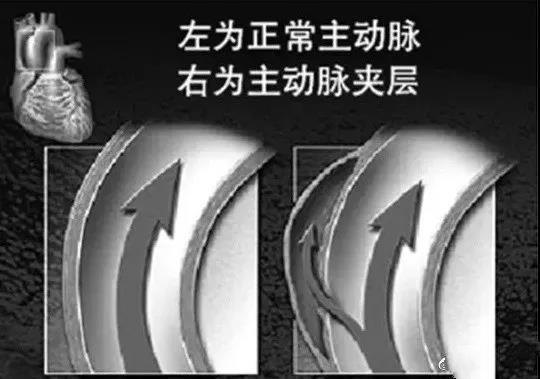 WeChat Image_20171213153753_meitu_3.jpg
