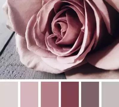 今年比焦糖色还火的颜色,叫干枯玫瑰色?