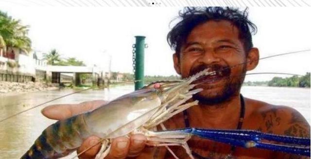 越南地区受大虾入侵,一只大虾都快顶上龙虾,游客们纷纷前来钓虾