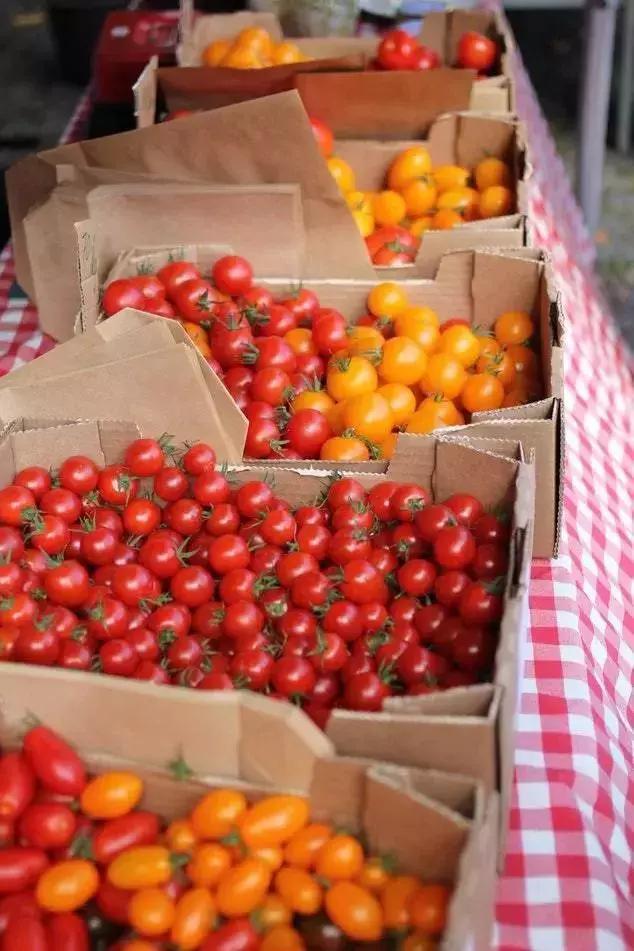 西红柿生吃还是熟吃好?原来区别这么大