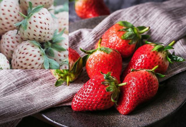 世界上最贵的7种水果,果然是看得起吃不起